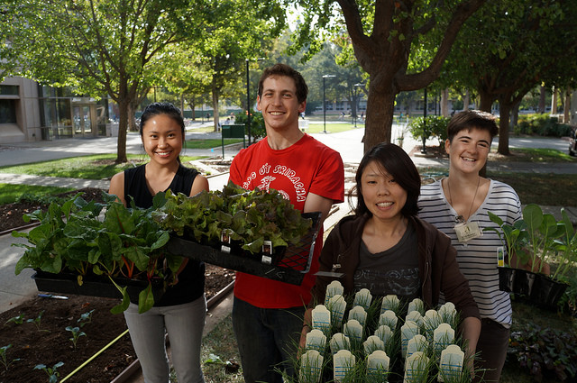Edible Landscaping Students