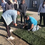 Image of Learning by Leading students installing turf as part of the SmartLawn project