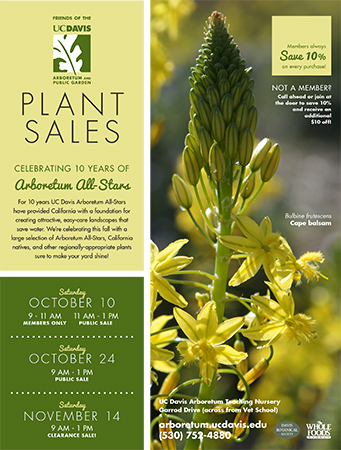 Fall Plant Sales Flier