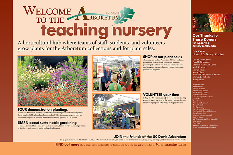 Teaching Nursery