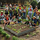 Image of students and volunteers in the UC Davis Good Life Garden.