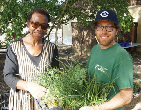 Volunteers needed for community planting days