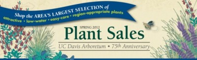 Plant sales and excellent press!