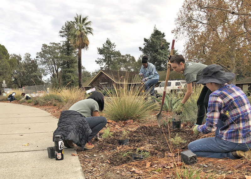 A group of interns work together to prepare the ground for new plants