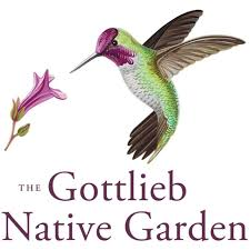 Image of gottlieb native garden logo.