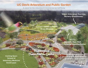 Diagram of hummingbird demonstration garden