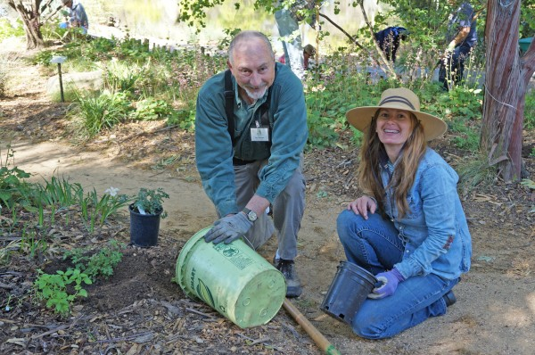 Native garden offers seasonal inspiration