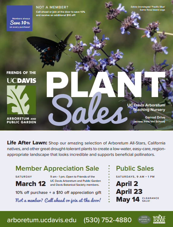 Saturday, May 14: Clearance plant sale