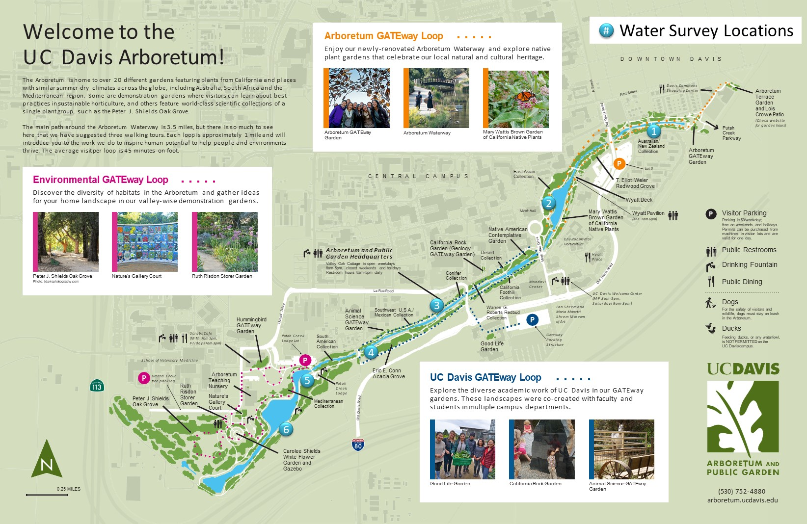 Community scientists needed to monitor the Arboretum Waterway | UC on