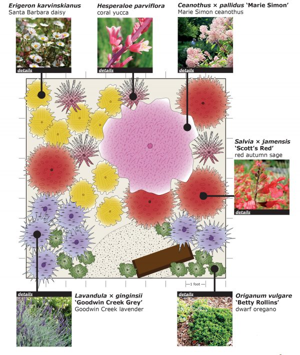 Wildlife planting plan
