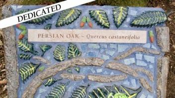 Persian oak plaque