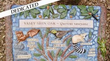 Vasey Shin Oak plaque