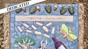 Cork Oak plaque
