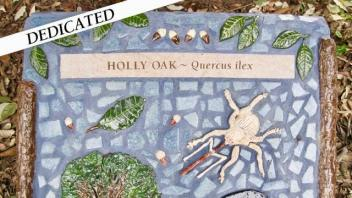Holy Oak plaque
