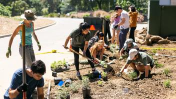 Image of Sustainable Horticulture students installing a landscape on Putah Creeek Drive.