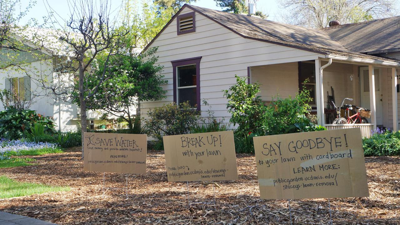 As Part Of Stacey Parkeru0027s Lawn Removal Process, She Covered Her Lawn With  Cardboard And Mulch. Signs Were Added To Encourage Others To Do The Same.