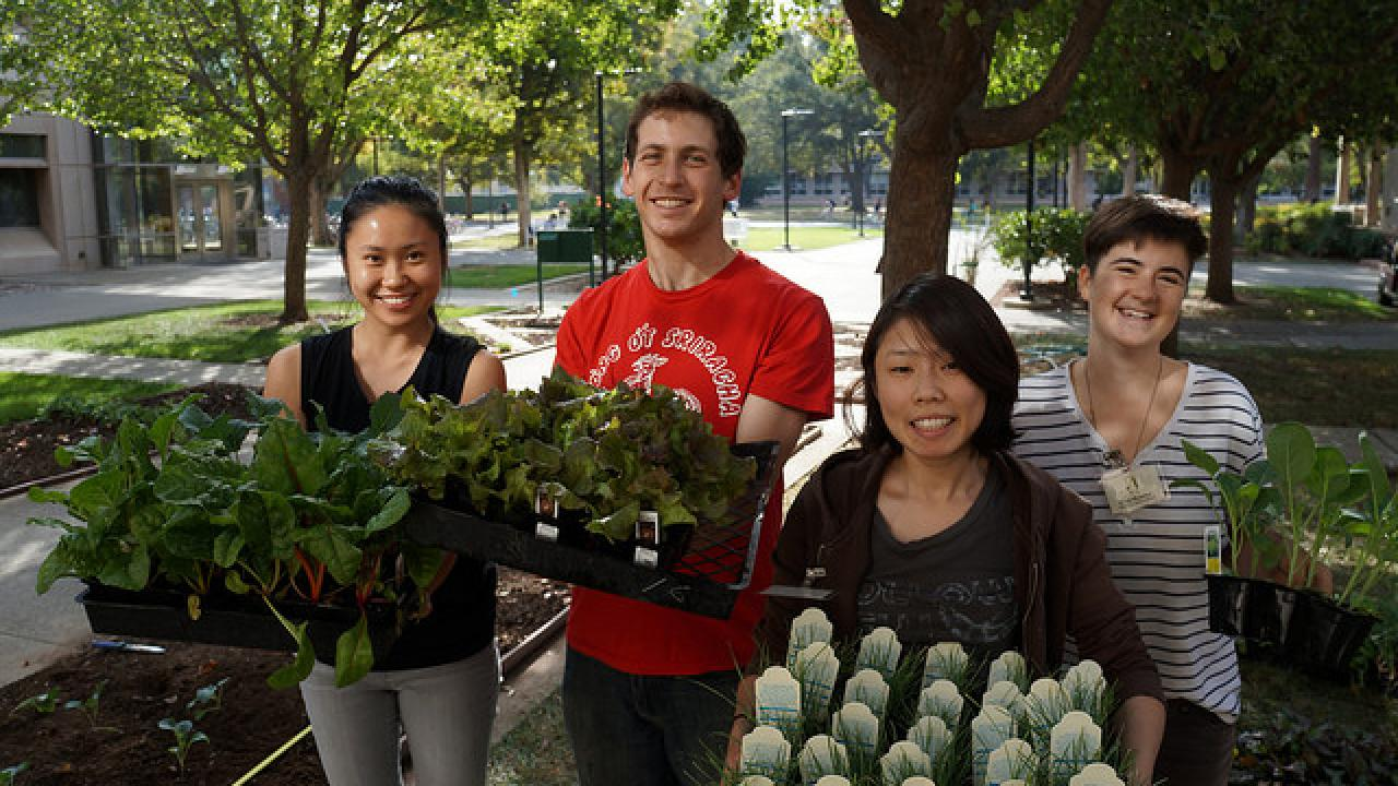Cool season edible purchases support student interns