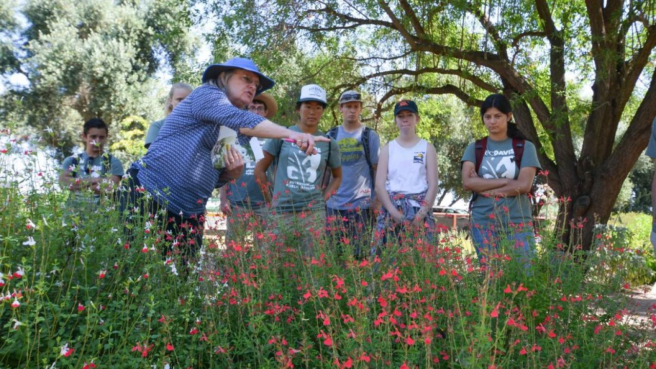 Ellen Zagory, director of public horticulture for the UC Davis Arboretum and Public Garden