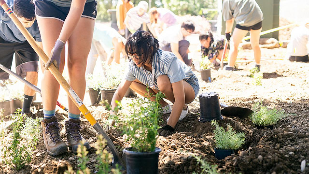 Image of Learning by Leading student landscaping.