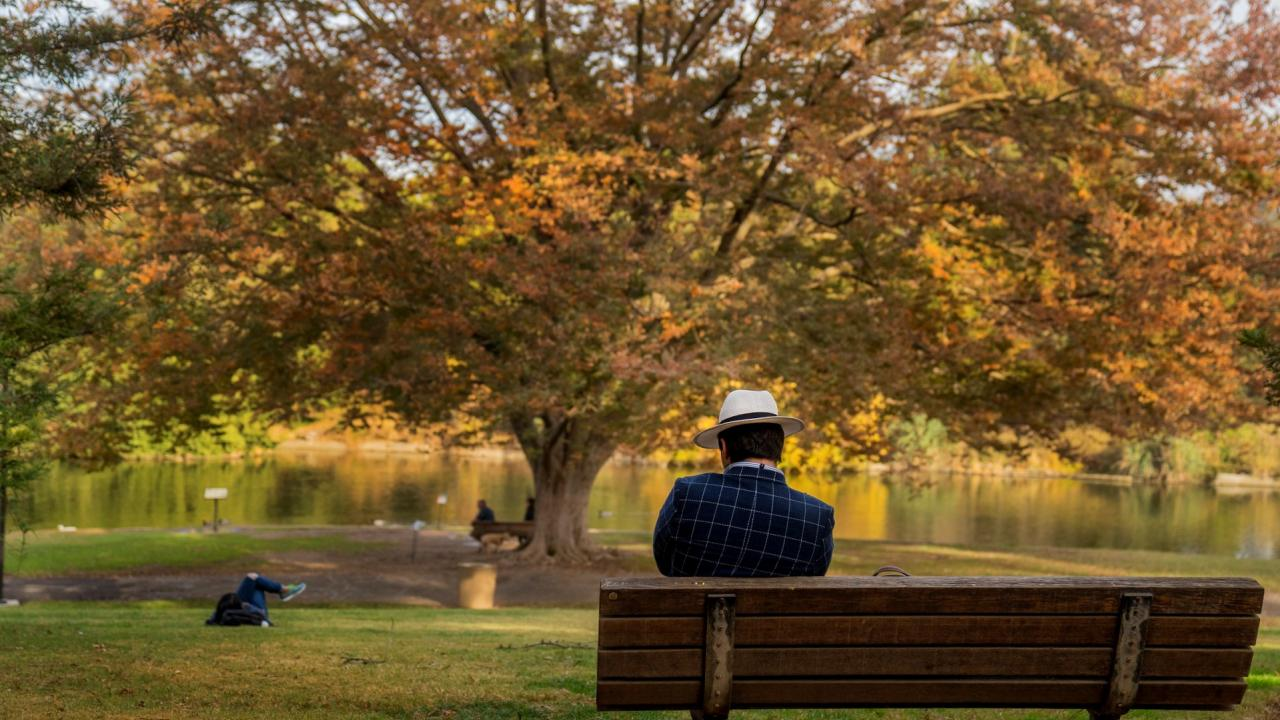 Person on a bench in the Arboretum.