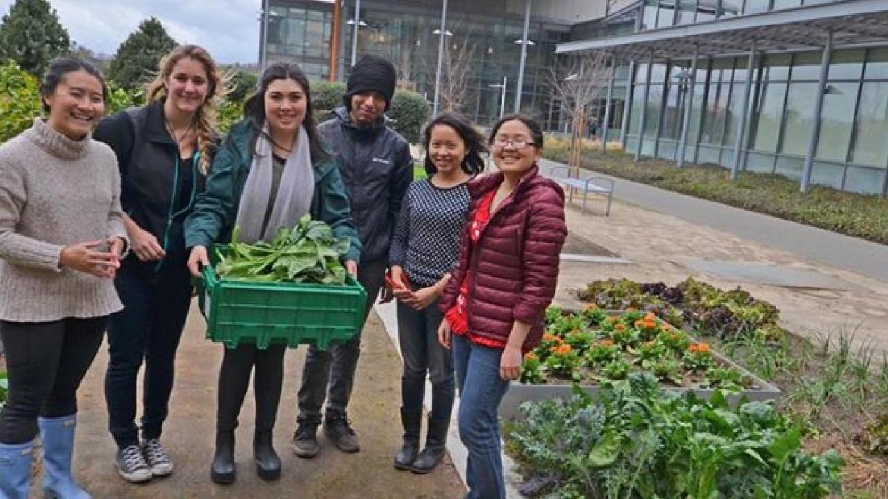 Students harvest Good Life Garden for donation to The Pantry