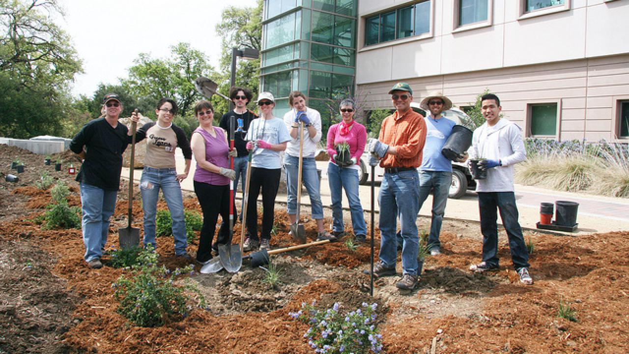Image of volunteers planting the California Rock Garden.