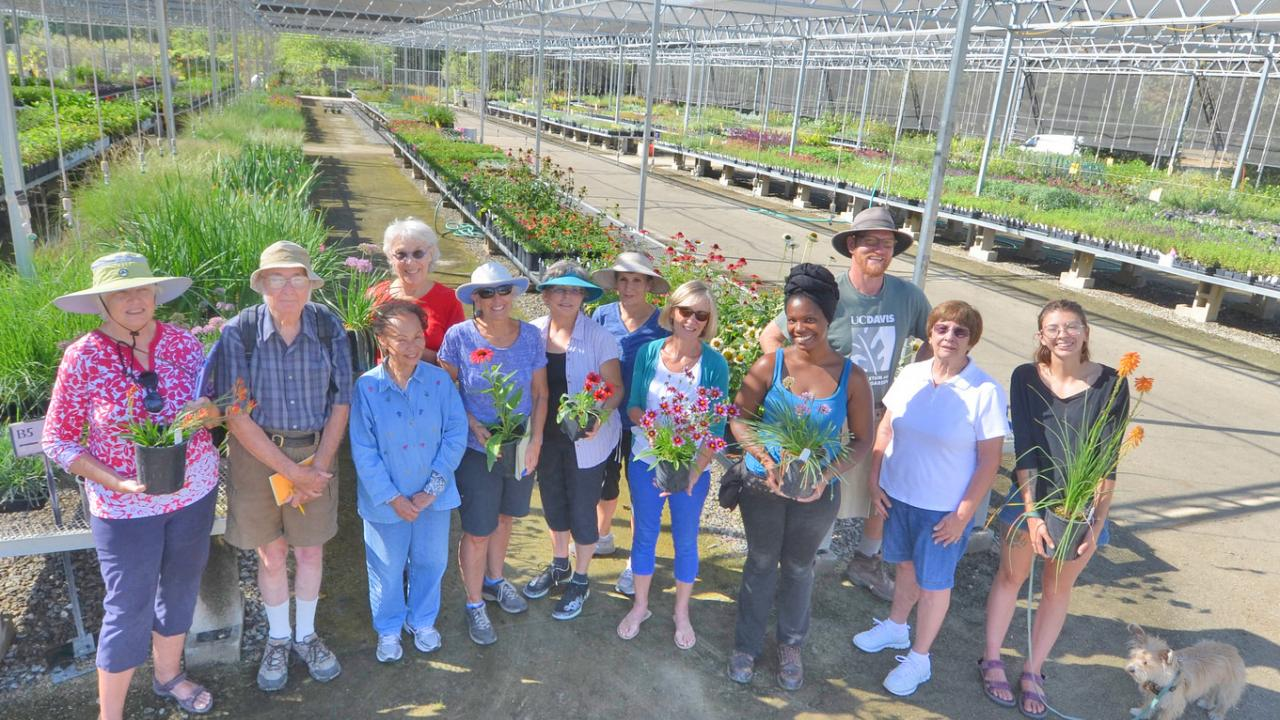 Image of students, volunteers and staff in the Arboretum Teaching Nursery