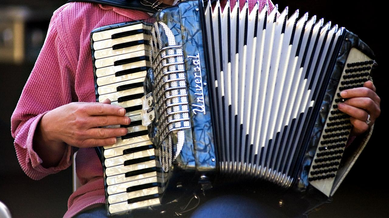 Image of accordion musician at the UC Davis Arboretum and Public Garden's bi-weekly folk music jam session on Wyatt Deck.