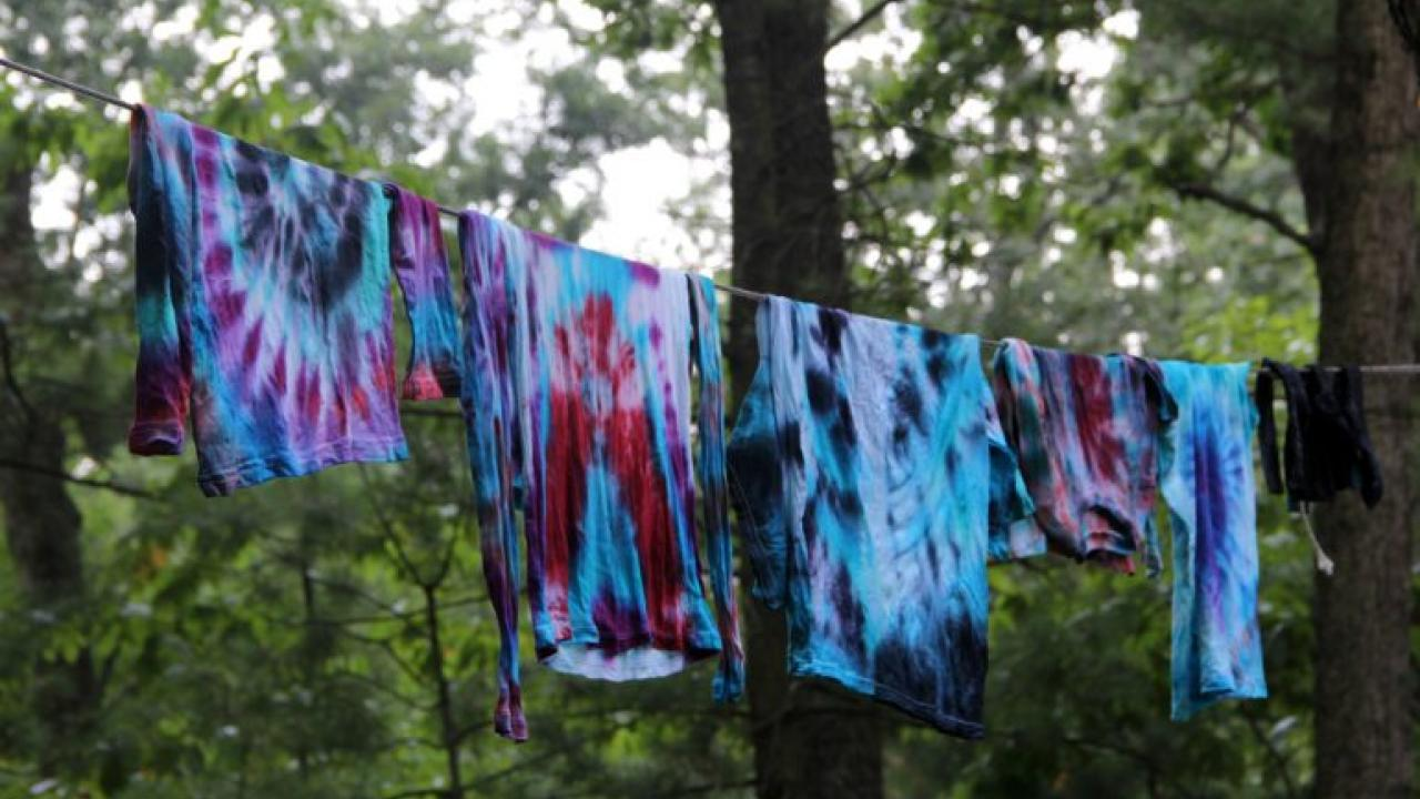 Natural Products Tie-dye Workshop