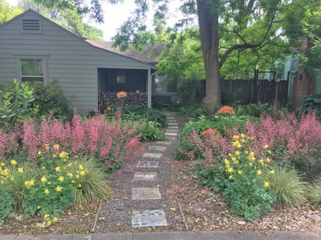 Image of Stacey Parker's lawn-free front yard.