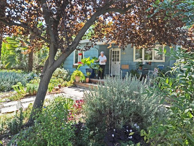 Image of Ellen Zagory's lawn-free front yard