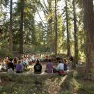 Image of class in the UC Davis Arboretum redwood grove.
