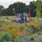 Image of volunteers in the UC Davis Arboretum's Environmental GATEway.