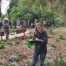 Image of UC Davis Arboretum and Public Garden Learning by Leading Curatorial student documenting plants.