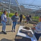 Student Intern Leads Workshop for High School Students for Growing Native Plants