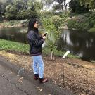 Image of water quality survey taker in the UC Davis Arboretum.