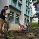 Students plant sustainable landscape outside Shields Library.