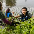 Student Intern planting in Arboretum Waterway