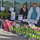 Arboretum volunteers Jessica Galvan and Judy Hecomavich share their pollinator gardening expertise with the public. Attendees to Sunday's (9/24/17) free event will learn the importance of gardening for pollinators and about the plants perfect for attracting them.
