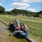 Taylor lab members in watercress field in Dorset, UK