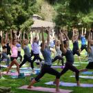 Image of yoga class in the Arboretum.