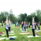 Photo of people doing yoga in the arboretum