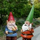Two garden gnomes in the Arboretum and Public Garden