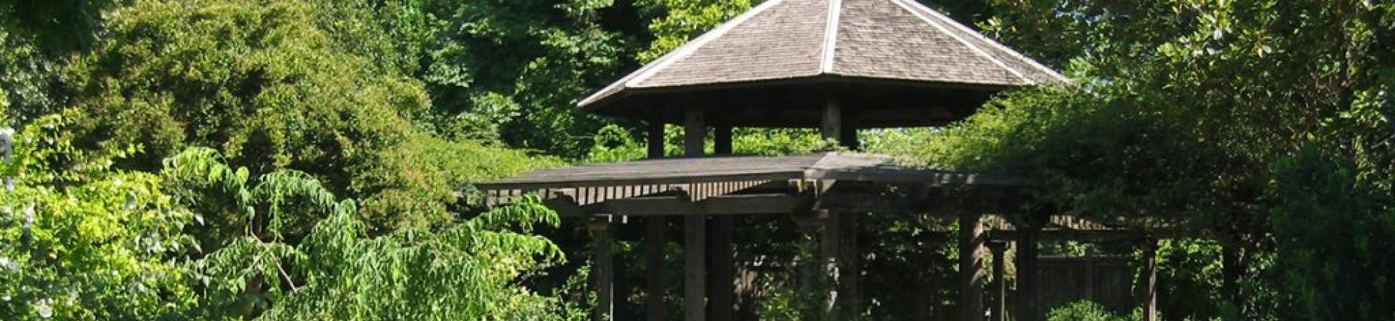 Carolee Shields White Flower Garden And Gazebo Uc Davis Arboretum
