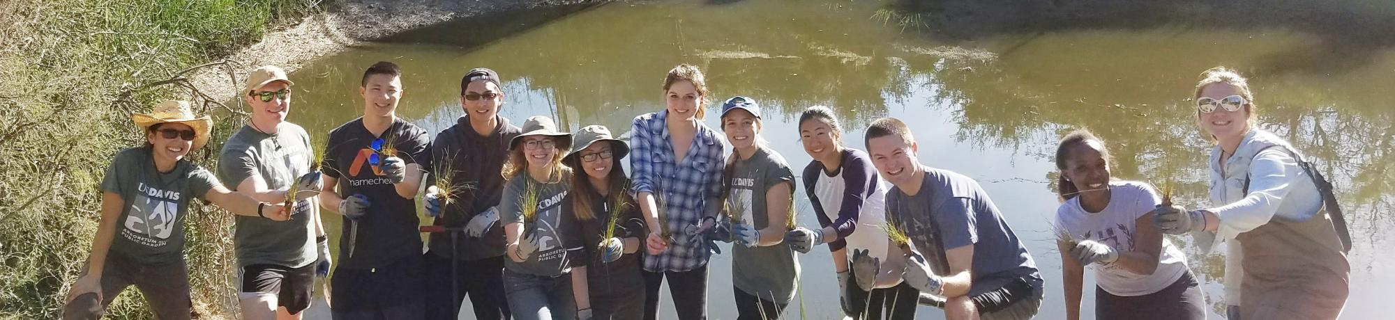 Image of UC Davis Learning by Leading interns planting the banks of the Arboretum Waterway.