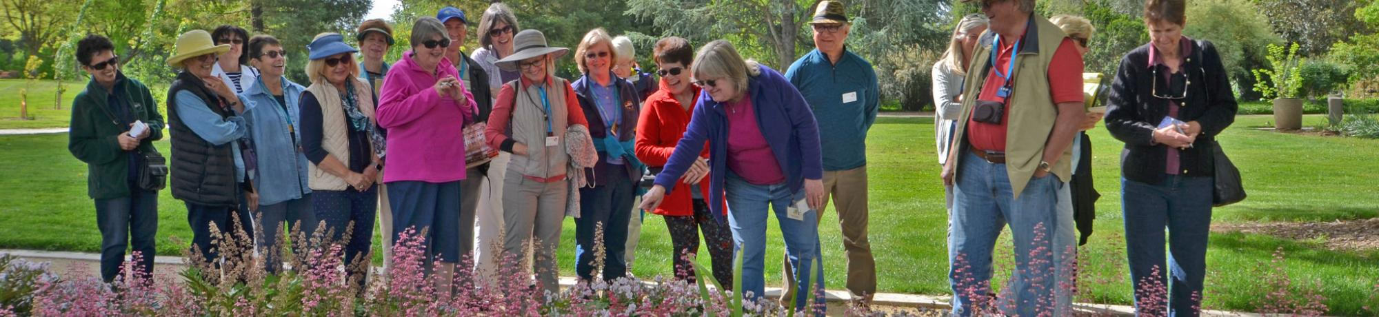 Image of Ellen Zagory leading a tour to a large group in a scenic location of the Arboretum.