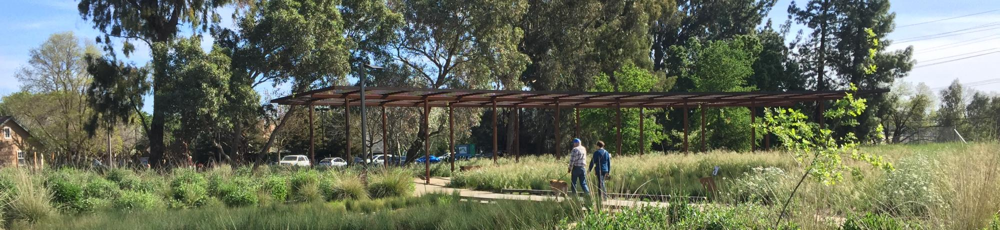 Image of the UC Davis Arboretum GATEway Garden.