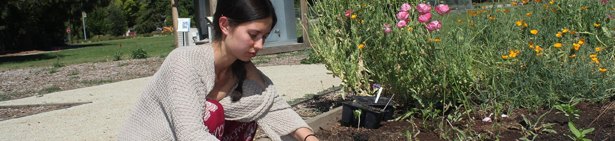 Girl in pink dress tending to plant bed.