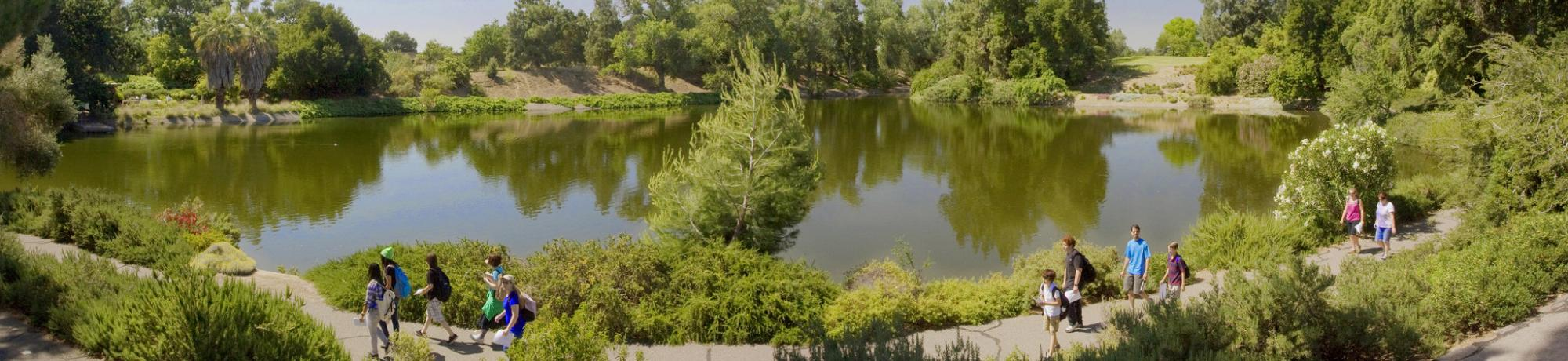 Image of visitors walking along the Arboretum Waterway in the UC Davis Arboretum's Mediterranean Collection.