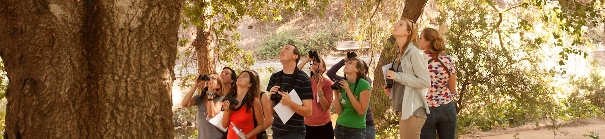 Image of students looking for birds in the UC Davis Arboretum